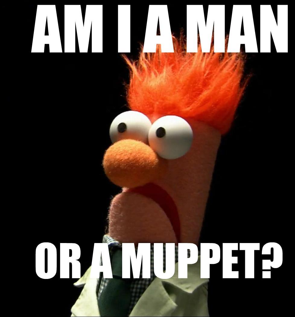 am i a man or a muppet?